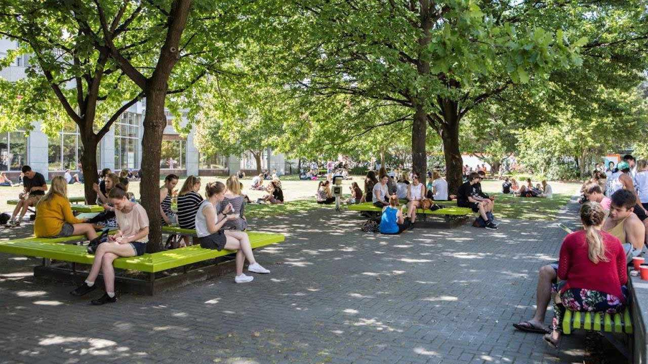 People sit on benches under trees on University of Canterbury's campus in New Zealand