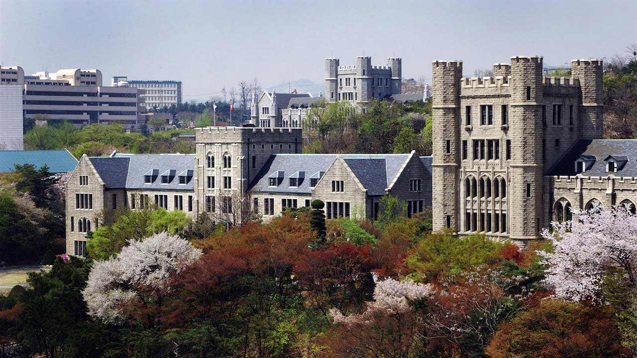 Tops of trees and buildings on Korea University's campus