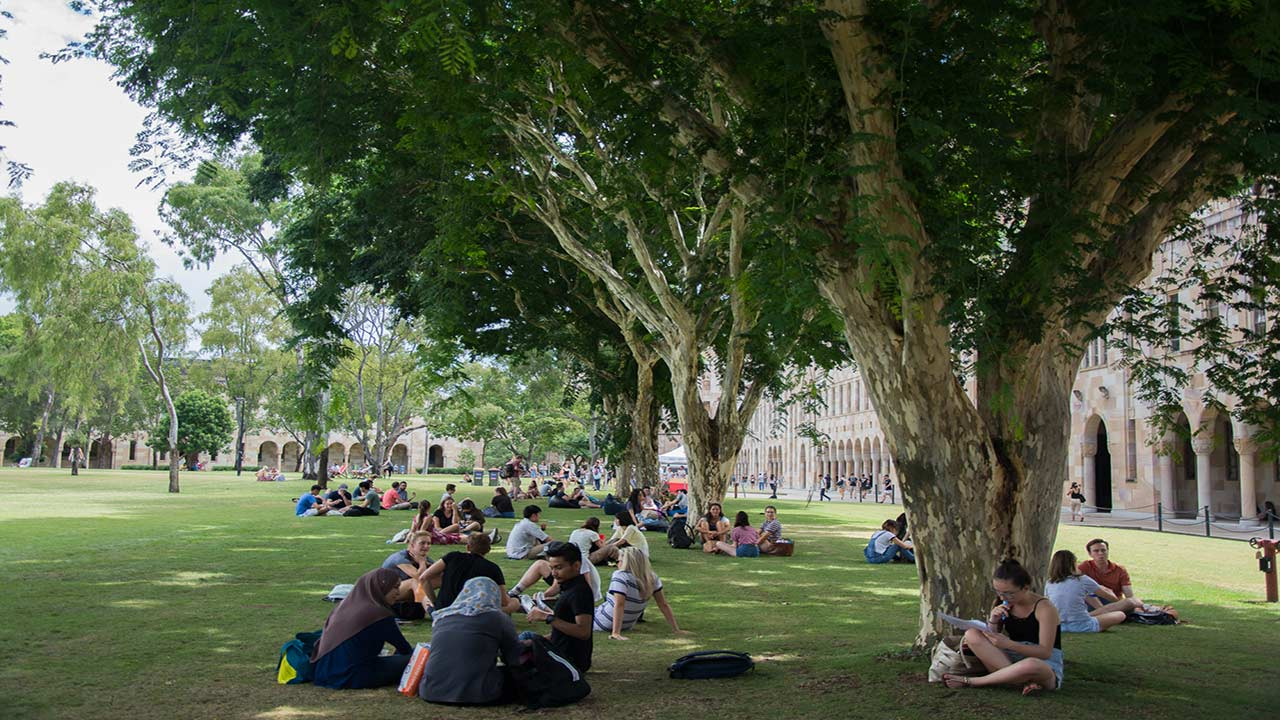Students sit in groups under the large trees on the quad of UQ's campus