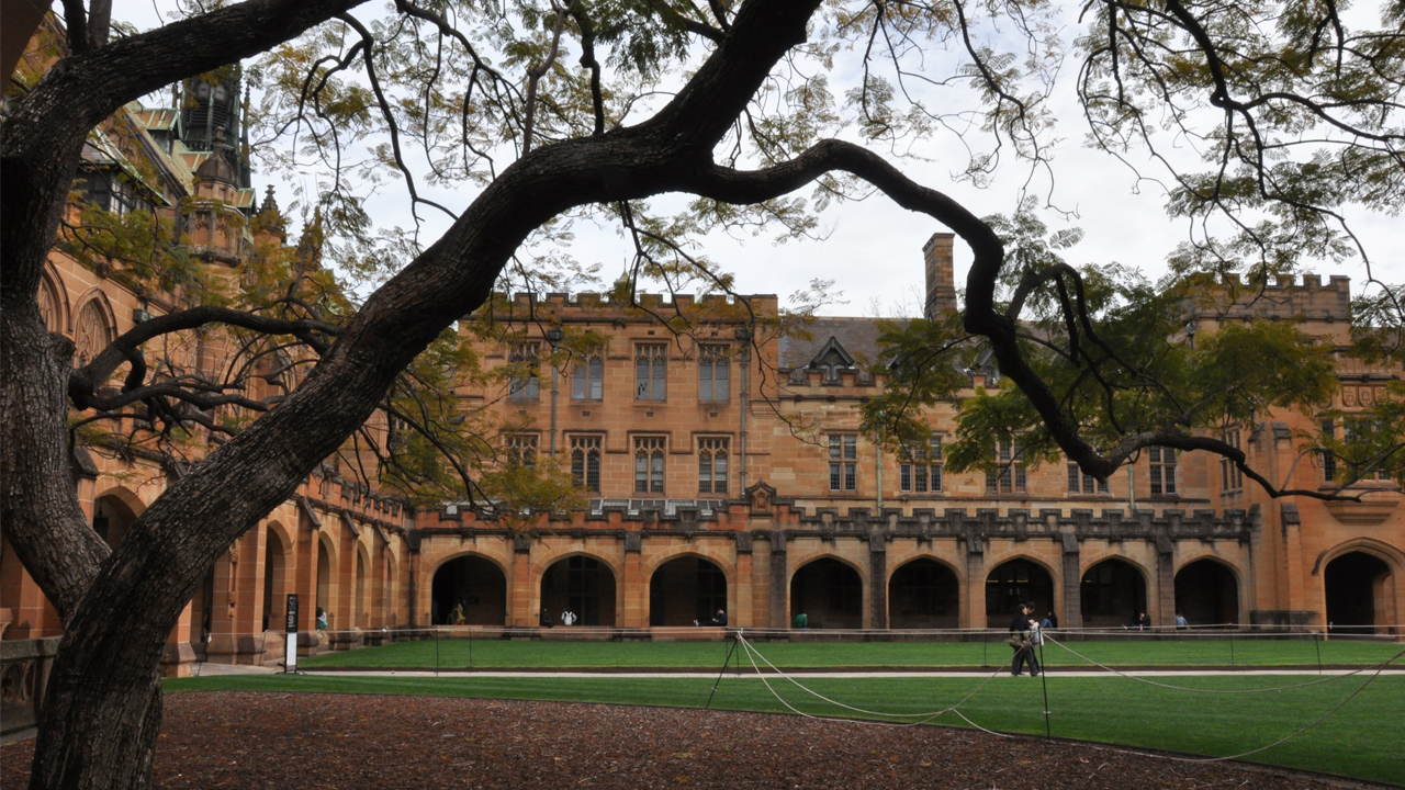 A person walks along a path in the middle of a grassy quad on University of Sydney's campus